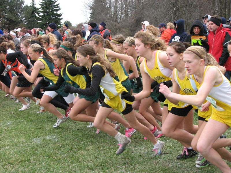 Lapeer East girls' cross country team qualifies for State